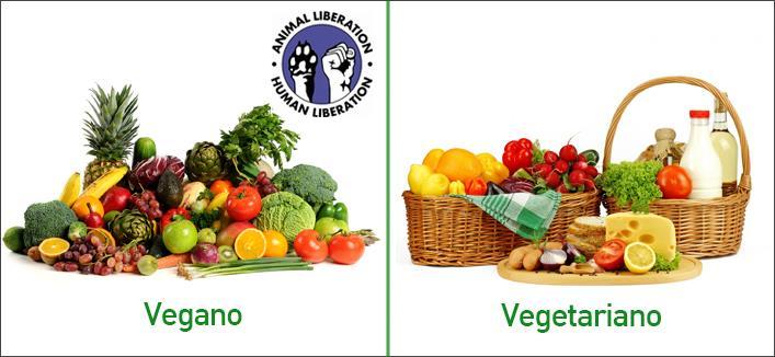 Resultado de imagem para veganismo x vegetarianismo
