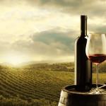 Vinho: conheça suas características e harmonizações – Parte 2